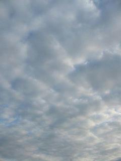 1月26日朝8時ごろの空01