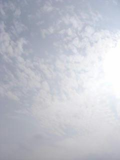 8月2日朝8時20分の空01