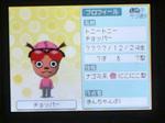 IMAGE_yuume00478.jpg