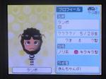 IMAGE_yuume02892.jpg