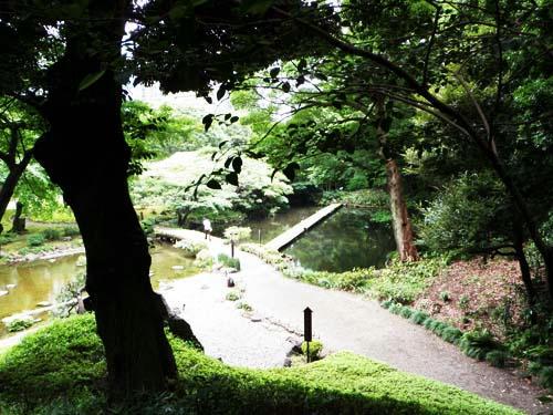 koishikawa2.jpg