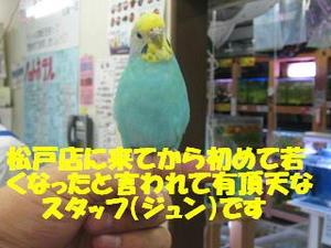 12decc7f.jpeg