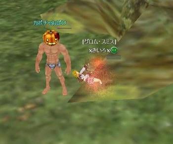 kabotya2.JPG