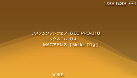 20100123053228.png
