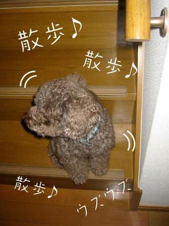 階段で待つ.jpg