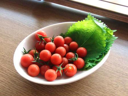 トマトとしそ