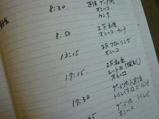 P1020215.JPG