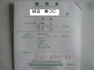 P1050208.JPG