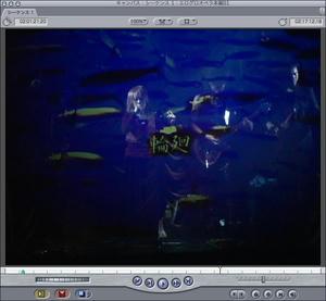 廻天百眼 エログロペラ DVD アムの解散