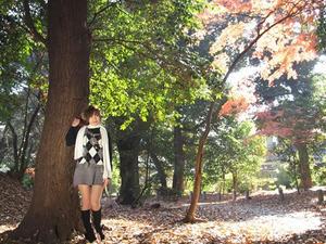PC210111shuusei.JPG