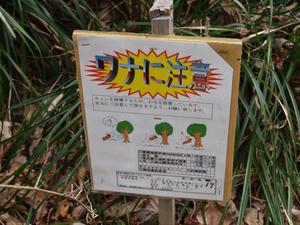 P2173443shuusei.JPG