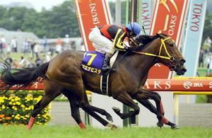 20090524-00000507-sanspo-horse-view-000.jpg