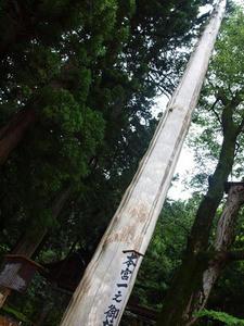 P7293251shuusei.JPG