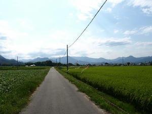 P8250380shuusei.JPG