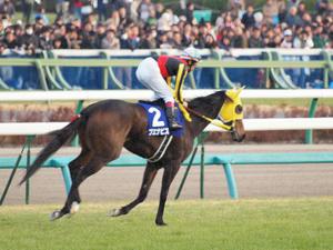 20091227_262shuusei.jpg