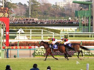 20091227_388shuusei.jpg