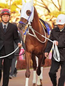 20091229_124shuusei.jpg