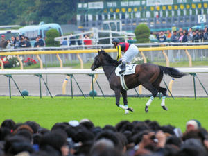 20100530_171shuusei.jpg