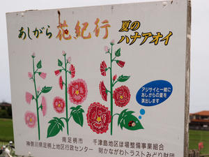 20100615_108shuusei.jpg