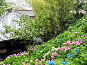 20100712_138shuusei.jpg