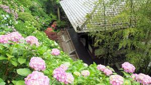20100712_198shuusei.jpg