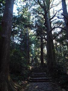 20100916_1016shuusei.jpg