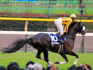 20101031_243shuusei.jpg