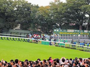20101031_349shuusei.jpg