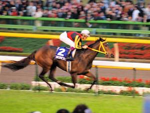 20101031_428shuusei.jpg