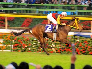 20101031_430shuusei.jpg