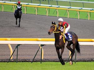 20101031_458shuusei.jpg