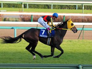 20101226_180shuusei.jpg