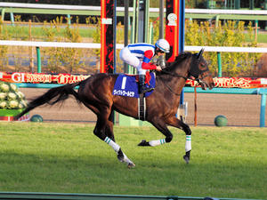 20101226_157shuusei.jpg