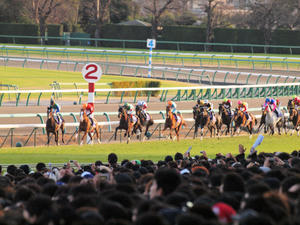 20101226_247shuusei.jpg