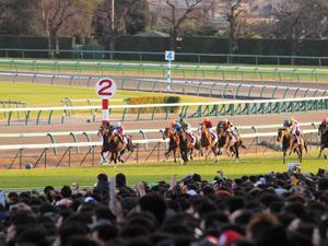 20101226_290shuusei.jpg