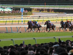 20101226_293shuusei.jpg