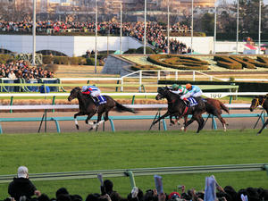 20101226_302shuusei.jpg