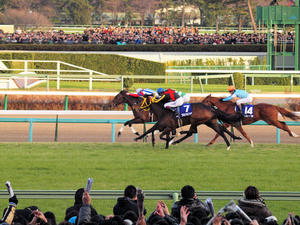 20101226_314shuusei.jpg