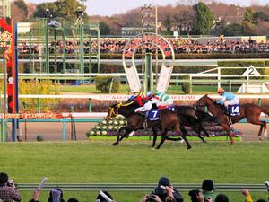 20101226_316shuusei.jpg