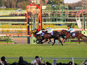 20101226_317shuusei.jpg