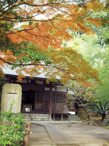 20101226_401shuusei.jpg