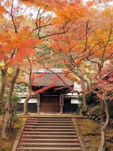 20101226_426shuusei.jpg