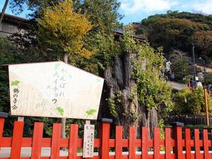 20101226_508shuusei.jpg