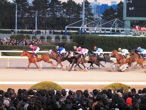 20101229_300shuusei.jpg