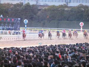 20101229_320shuusei.jpg