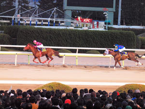 20101229_337shuusei.jpg