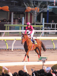 20101229_370shuusei.jpg