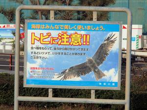 20101226_656shuusei.jpg