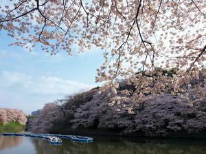 20100404_280shuusei.jpg