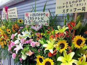 20110723_6shuusei.jpg